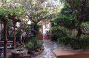 Cho thuê biệt thự mặt tiền đường Hoàng Hoa Thám gần biển Bãi Sau (MS 44)
