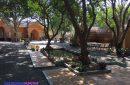 Homestay Mango Phước Hải một trải nghiệm thú vị giữa thiên nhiên